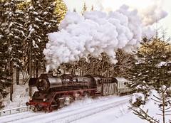 """Dampflok """"Rodelblitz"""" (Schneeglöckchen-Photographie) Tags: eisenbahn railway locomotive dampflok lokomotive"""