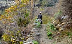 Trevelez -  Alpujarras DSC02449.JPG (Chris Belsten) Tags: winter mountains spain andalucia sierranevada trevelez jamon alpujarras mulhacen lasalpujarras