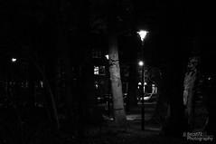 Schaduw (becat72) Tags: zwartwit bert donkerlicht