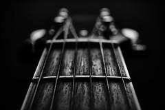 040115 - 358/365 (Explore) (Dan Fleury Photos) Tags: wood blackandwhite music white canada black texture closeup canon pod guitar grain instrument strings fret bnw 1740 project365 p365 canadianphotography