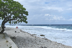 Tiptapass and dog at twilight Tahiti Rangiroa (sapphire_rouge) Tags: france lagoon resort tahiti atoll rangiroa polynesia snorkeling タヒチ franchpolynesia 環礁 ランギロア ポリネシア atool polynésiefrançaise フレンチポリネシア island kiaora