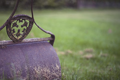 HBW - On a Roll! (Tom Insole Photography) Tags: old cambridge brown green grass metal digital canon vintage handle happy eos 50mm rust day dof flat bokeh meadow depthoffield roller roll f18 dslr 50 depth rol boken fifty nifty granchester blemish canon50mm blemishes canon50mmf18ii cs6 canon50 niftyfifty canonphotography 50mmf18ii nifty50 canonefs granchestermeadows canonphotographer canon40d bokehwednesday happybokehwednesday cambridgephotographer photographerdigitaldslrdepth inthemetal