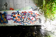 Tekn (You can call me Sir.) Tags: california graffiti bay north bayarea northern tekn ssres3