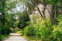 Seoul: Seonyudo Park (Seoul Korea) Tags: park city asian photo asia korea korean photograph seoul kr southkorea   kpop  2015 republicofkorea seonyudo seonyudopark canoneos6d flickrseoul sigma2470mmf28exdghsm