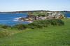 Overlooking bare island (joyceandjessie) Tags: bareisland coast