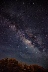 Milky Way in Baja (Erin Claassen Photography) Tags: travel vacation sky holiday night stars mexico wanderlust traveller adventure galaxy astrophotography bajacalifornia astronomy nightsky bajacaliforniasur loreto constellations bcs traveler milkyway travelphotography milkywaygalaxy