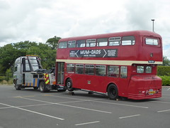 17 July 2016 George Junction (9) (togetherthroughlife) Tags: 2016 july plymouth devon georgejunction bus 137 tco537