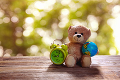 Teddy bear toy (Krunja) Tags: birthday bear wood old baby brown white holiday cute green art abandoned love clock nature beautiful smile childhood sign vintage table toy toys idea design photo wooden cool funny day child friendship floor teddy bokeh earth background bears mint valentine retro invitation card cover gift frame valentines romantic lonely concept simple