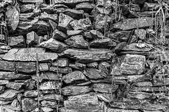 Dry Stone Wall (TD2112) Tags: blackandwhite stone contrast mono blackwhite construction layers drystonewall handbuilt silverefexpro2 tonyduke