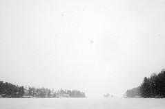 Out for a walk (Fuutography) Tags: finland finlndia suomi bw blackandwhite lake frozen snow snowing clouds bay frozenwater ice fog forest
