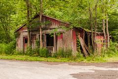 On the Corner of Honeycomb Road (Back Road Photography (Kevin W. Jerrell)) Tags: abandoned virginia oldbuildings dilapidated fallingdown daysgoneby nikond60 backroadphotography leecountyva puckettscreek