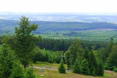 P1020939 (Michael Buch 65) Tags: naturparksaarhunsrück erbeskopf hochwald
