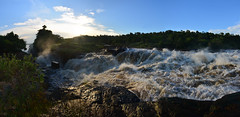 The mighty Nile River (supersky77) Tags: nile nilo waterfall cascata murchisonfalls murchison rapide rapids uganda africa murchisonfallsnationalpark