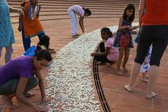 joy_at_work_5737 (Manohar_Auroville) Tags: sri aurobindo birthday auroville matrimandir urn amphitheatre decorations flowers beauty beauties girls manohar luigi fedele 15816