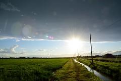 E luce fu () Tags: stella light sun lens landscape star country campagna flare sole luce paesaggio flares