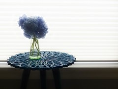 Blue and Turqouise (nikagnew) Tags: hydrangea blue turquoise endtable window light blind backlight vase glass