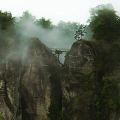 Like a Painting (redfurwolf) Tags: bridge mountain tree germany deutschland rocks saxony sachsen bastei schsischeschweiz saxonswitzerland likeapainting sonyalpha malerweg redfurwolf
