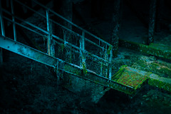 davey jones staircase (kevin.boyd) Tags: dark gloomy foreboding creepy seaweed decay walkway gangplank stairs sea