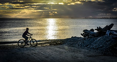 Ride the tide (Images by Christie  Happy Clicks for 2016!) Tags: bike gold goldenhour bicycle beach seashore shore sunset night glow nikon d5200 clouds shine sparkle horizon filteredlight boatramp golden silhouette seascape ocean sea seaside sunsetter
