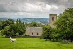 White Horse (NoVice87) Tags: church yorkshire whitehorse animal valeofpickering clouds overcast