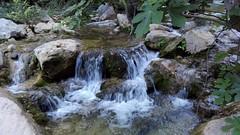 Rio- River. (Deyis astudillo) Tags: river rio natural agua naturaleza sadernes catalua espaa spain