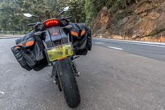 KTM Duke 390 2014, with ViaTerra Velox Saddlebags (rear view, 2 bags mounted) (demawo) Tags: coffsharbour ktm ktmduke390 motorbike motorcycle viaterraveloxsaddlebags