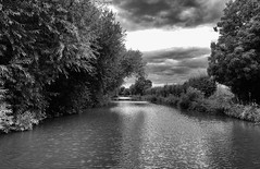 Light over rippled water (3pebbles) Tags: blackandwhite monochrome water rippled evening canal grandunioncanal countryside rural towpath trees