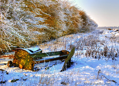 The Colours of Winter (Ninja Dog - 忍者犬) Tags: uk blue winter light england snow colour nature landscape gold countryside nikon scenery northamptonshire fields february 2012 lateafternoon hedgerow tonemapped d80 geddington sheepfeeders