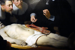 Rembrandt, The Anatomy Lesson of Dr. Tulp, detail with arm