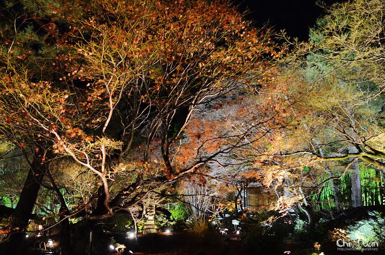 嵐山寶嚴13.jpg