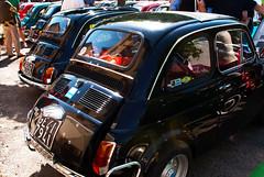 Un sacco di Fiat 500 (maximilian91) Tags: italy italia fiat liguria oldcars vintagecars fiat500 italiancars fiat500l montoggio fiat500f