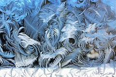 Frost on the window (ory.varzgar) Tags: winter cold ice nature frost frostywindow