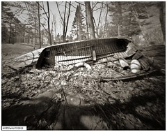 The last days of usefulness (DelioTO) Tags: lake ontario canada rural landscape blackwhite spring woods object trails pinhole beaches april 4x5 adoxchs100 autaut f175 aph09