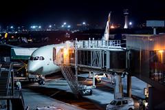 Etihad Airways B787-9 (Rami Khanna-Prade) Tags: india airport bombay mumbai aeroport inde genx etihad dreamliner b789 boeing7879 n1009n a6bla cn39646