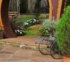jardim (jakza - Jaque Zattera) Tags: jardim cadeira degrau jakza jaquezattera