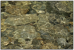 _DSC1960a (tellytomtelly) Tags: water creek washington rocks stream northcascades rubycreek