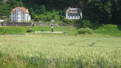 """Villa """"Strandblick"""" (links) (klaffi60) Tags: elbe rathen"""