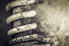 Coil (Daniela 59) Tags: macro metal cementmixer machine rusty textures flickrphotowalk macrotextures macromondays daanviljoengamepark danielaruppel