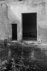 Dos puertas y un stano (Matias Nicolas Sorribas) Tags: matiassorribas argentina entrerios molinodoll puerta blancoynegro analgica rollei35s ilfordfp4