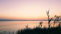 Albufera de Valencia V - Para Maelia (Quique CV) Tags: albufera albuferadevalencia valencia lago lake atardecer verano sunset summer landscape paisaje espaa spain 2016 sail barca hss