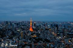 Tokyo Tower Blue Hour II (Sol y Luz Photography (aka love_2_see_the_world)) Tags: skyline tokyo overcast citylights tokyotower bluehour cityskyline