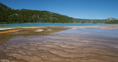 YellowStone-9434.jpg (ngkaiwa) Tags: yellowstone yellowstonepark