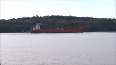 Alpine Stealth (Jacques Trempe 2,400K hits - Merci-Thanks) Tags: quebec canada stefoy ship navire fleuve river stlaurent petrolier tanker alpine stealth