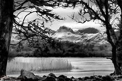 Lingmoor Fell, Lake District (NeilAlexanderD) Tags: travel mountain lake tree nature water monochrome horizontal outside outdoors scenery day natural scenic noone peaceful tranquility nobody scene calm snowcapped scenes tranquil naturalworld scenics peacefulness calmness tranquilscene traveldestinations blackkandwhite traveldestination