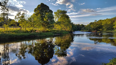 The River Don (Rick Ellerman) Tags: trees cloud reflection tree nature water canon river scotland aberdeenshire reflect aberdeen reflective don inverurie riverdon kemnay canon750d