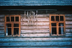 Seto Museum (.Kaisu.) Tags: estonia asahipentaxspotmatic asahipentaxspotmaticspii analogue kodak kodakektar100 ektar filmphotography vintageanalogue industar502 industar 35mm m42