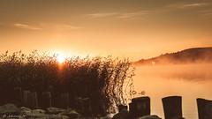 Sunrise (JH') Tags: nikon nikond5300 nature nikkor d5300 summer sky sun sunrise water ocean landscape