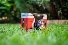 DSLR Storage box :) (Kostas Mavridis) Tags: grass bokeh toy garden 18 flickrunitedaward
