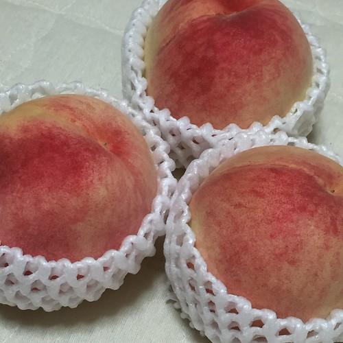 和歌山の桃