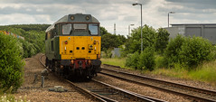 DCR Class 31/4 no 31452 at Shirebrook on 27-06-2016 route learning (kevaruka) Tags: shirebrook shirebrookstation derbyshire class31 class67 dcr dbc locomotive lightroom yellow green red canon canoneos5dmk3 canon5dmk3 canon70200f28ismk2 5d3 5diii 5dmk3 flickr frontpage thephotographyblog ilobsterit trains train transport trainstation colour colours color colors england